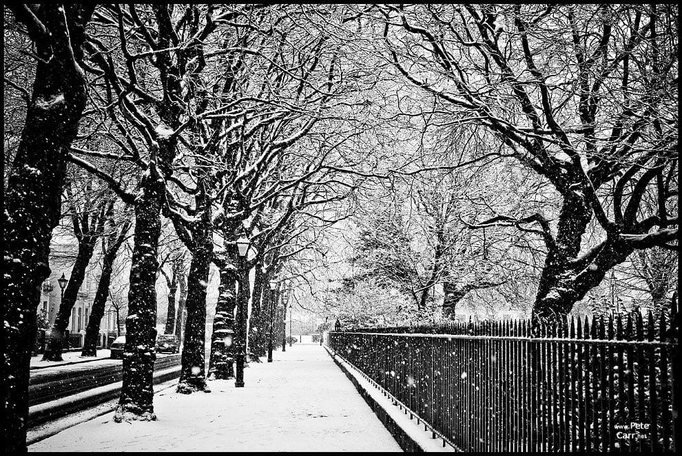 Snow day - IV