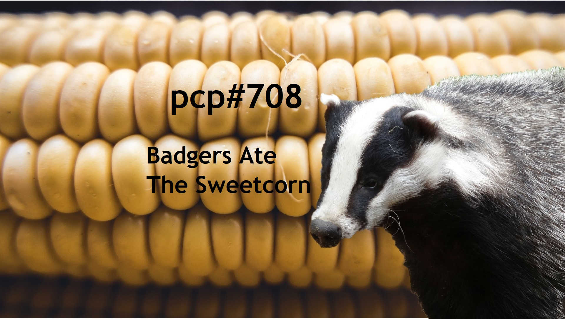 Pete Cogle's Podcast Factory – PCP#708… Badgers Ate The Sweetcorn…..
