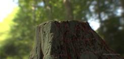 petemcnally_treestump_image02_wire