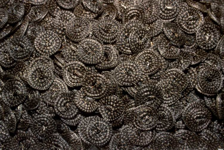 A large collection of snakes lay coiled up in a pile. Photo by conservation photographer Pete Oxford.