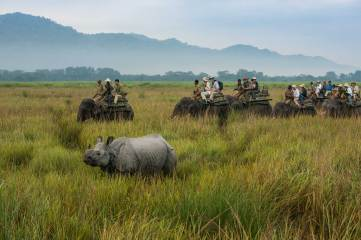 A group of tourists take in the the sights around them including a rhinoceros while riding on elephant back. Photograph by conservation and travel photographer Pete Oxford.