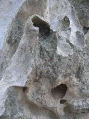 Goblin, Bandolier, NM