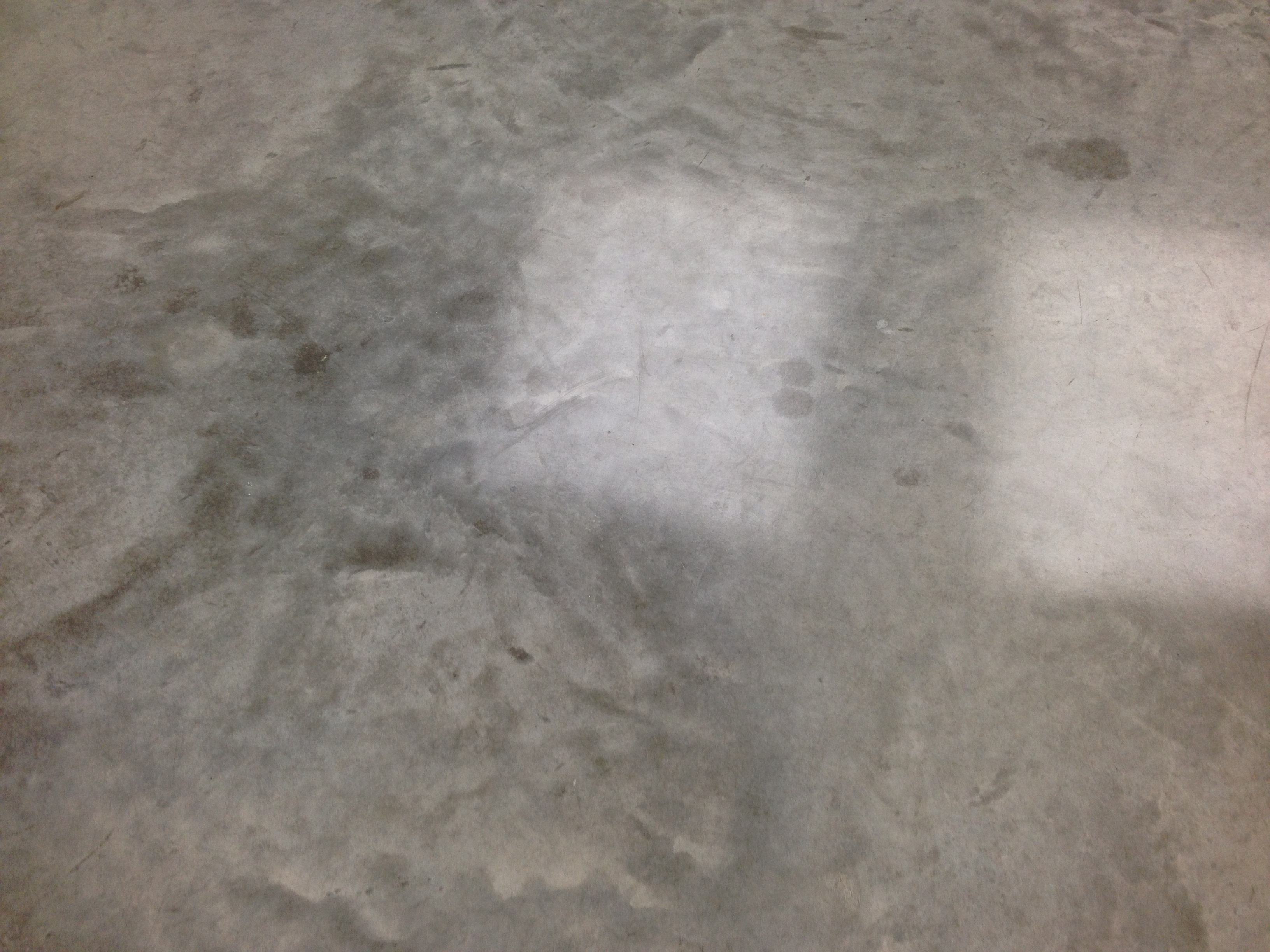 White Cube Floor Polished Concrete 2013  Peter Ainsworth