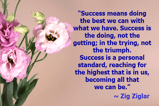 Success means doing the best we can