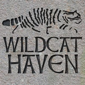Click the logo to visit Wildcat Haven
