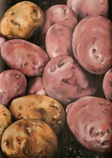 untitled potatoes