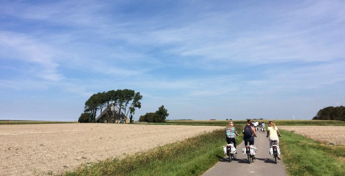 Drie fietsers in de polder van het Marneslenk.