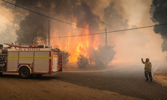 A firefighter and fire tanker dwarfed by a raging bushfire.