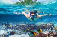 Snapchat-kanal deler spektakulære undervannsopplevelser