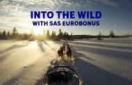 SAS EuroBonus: Har du drømt om hundespann ?