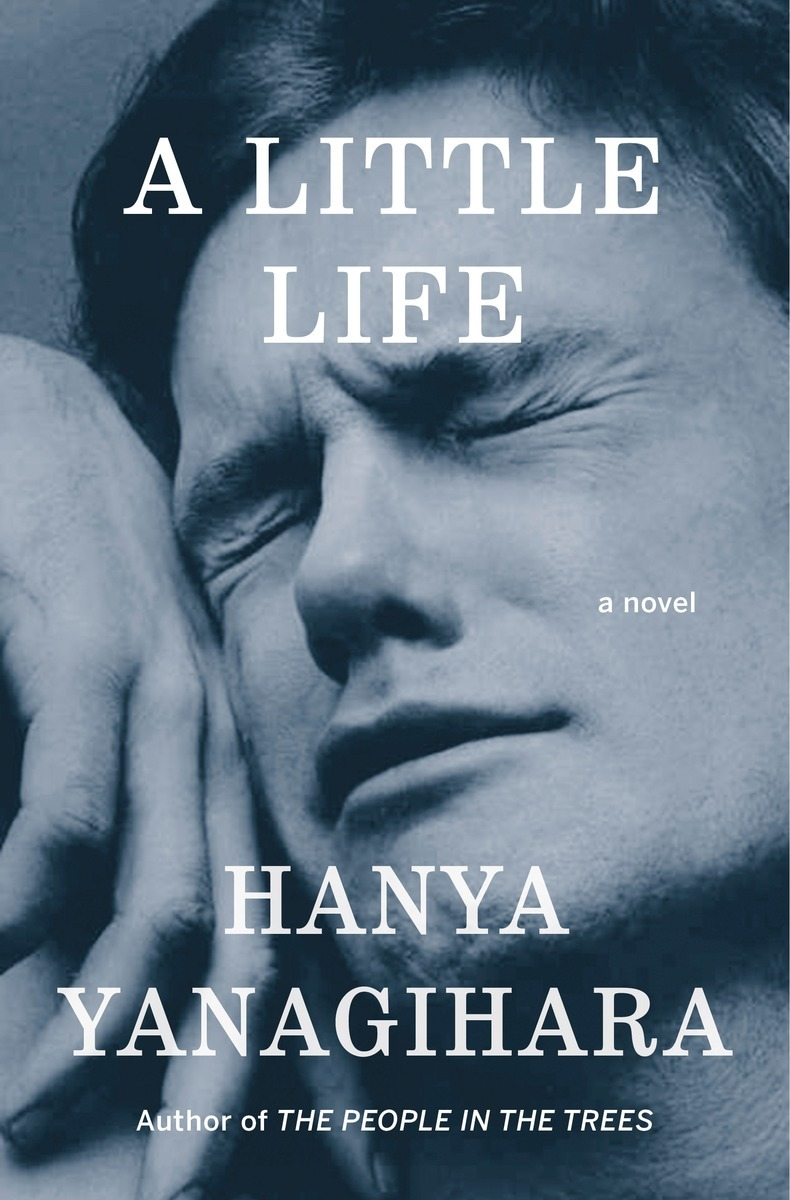 Image result for little life cover