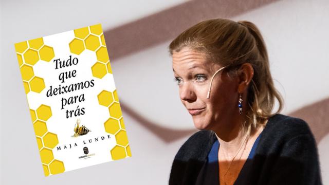 'Tudo que deixamos para trás': a relação delicada entre homens e abelhas
