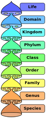 Biological- Classification