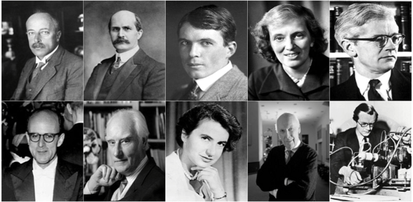 von Laue, Bragg Senior & Junior, Crowfoot Hodgkin, Kendrew, Perutz, Crick, Franklin, Watson & Wilkins