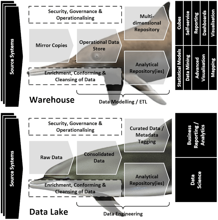 Convergent Evolution of Data Architectures