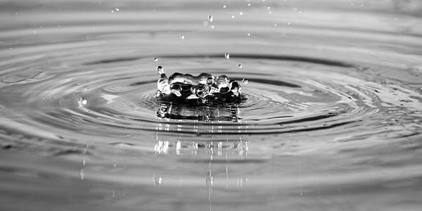Pond and Pebble