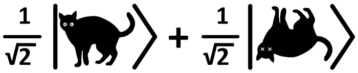 Schrödinger's Ket