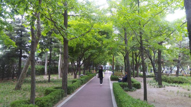 앙카라공원 산책길