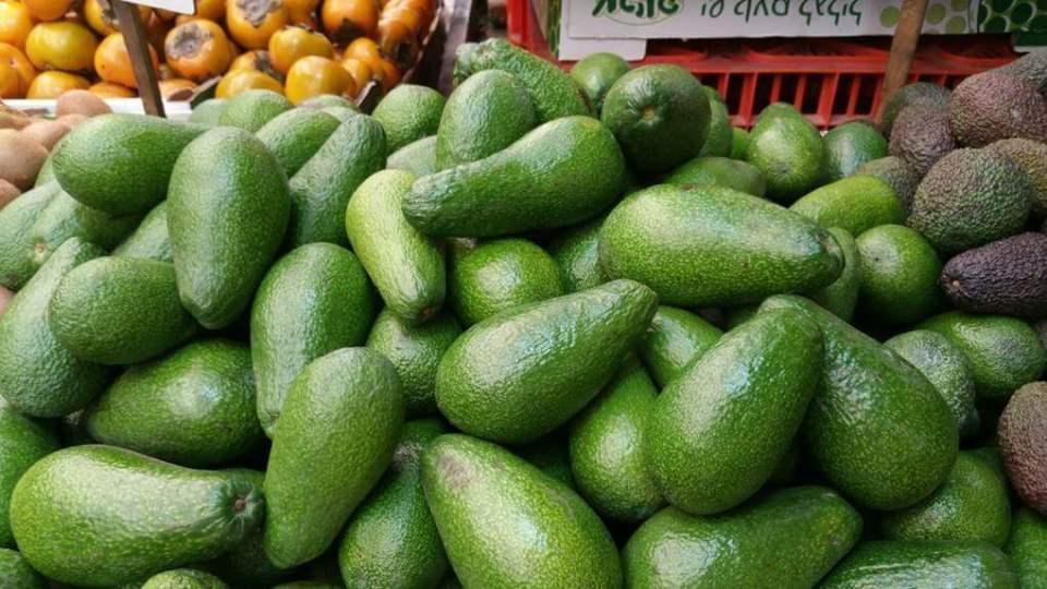 열대 과일 아보카도