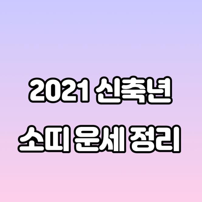 2021신축년 소띠 운세