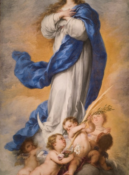 Mary and the Immaculate Conception