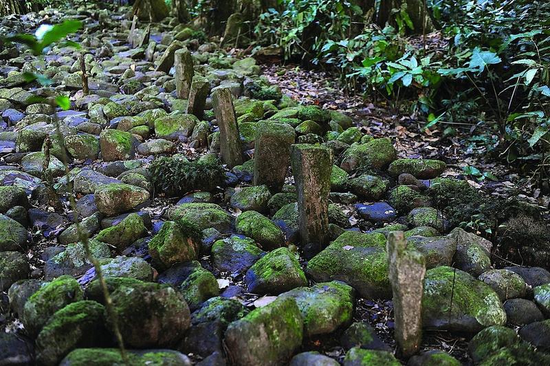 Taputapuātea &emdash; Taputapuatea - Marae im Hirivarigebiet © SCP