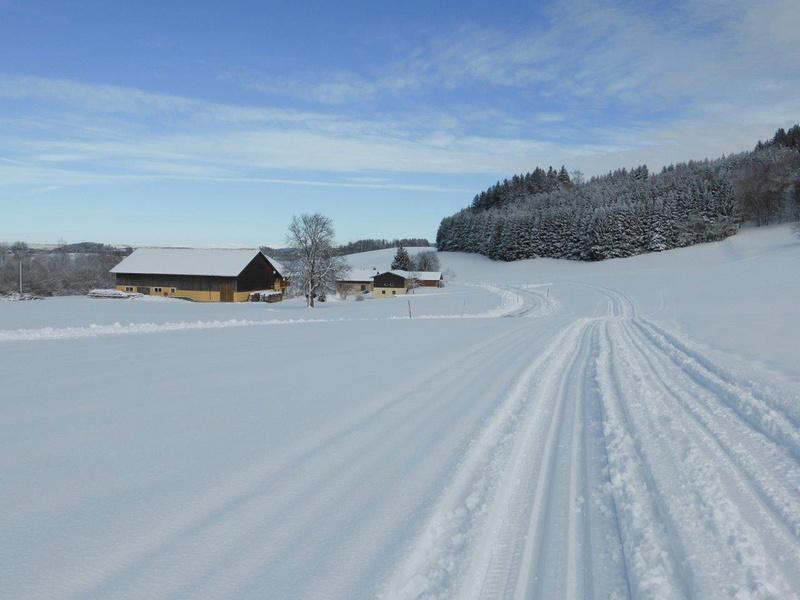 Winterlandschaft in der jungen Stadt Neumarkt am Wallersee