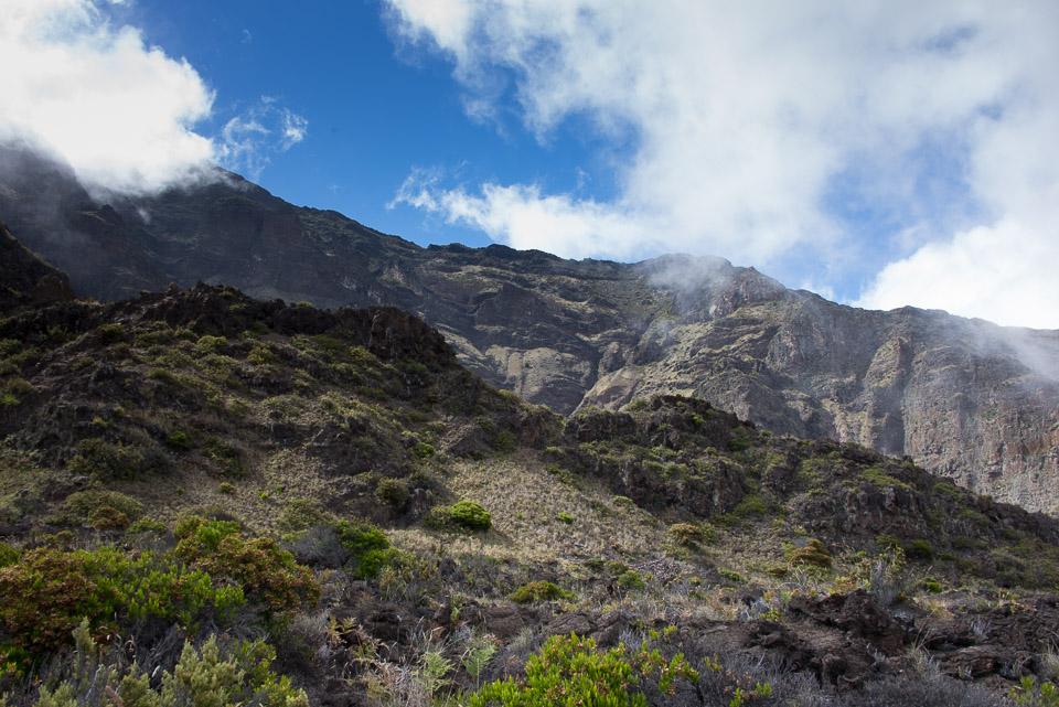 The Switchbacks along the Halemau'u Trail