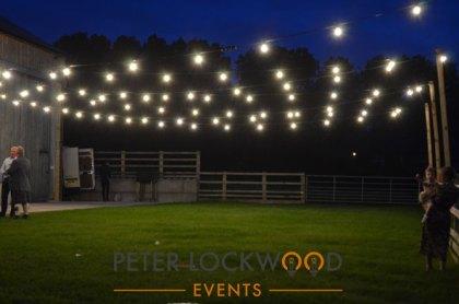 light your way with festoon lights