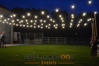4w festoon lights
