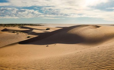 Lake Frome Dunes
