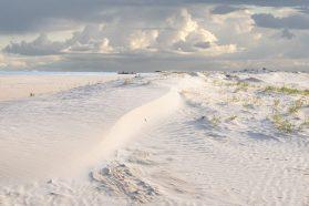 Dune with Dredge
