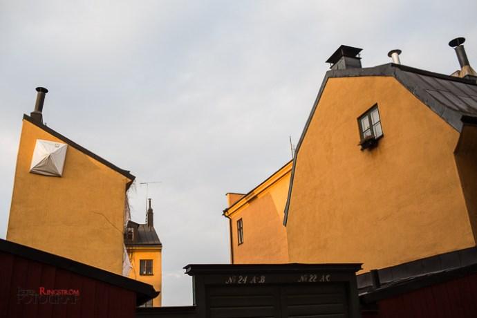 Fotograf Peter Ringström-FPR_4667