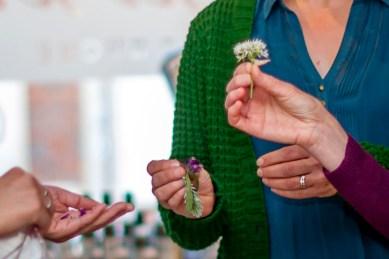 auch die schönen Blüten aller gesammelten Wildkräuter sind essbar.