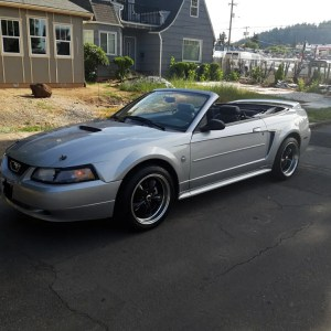 1999 Ford Mustang Convertible 35th Anniversary Edition Silver