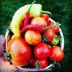 Salted Pickled Fresh Tomatoes (малосольных овощей помидоры)