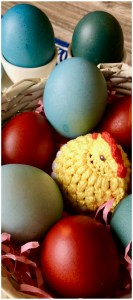It's Easy Dying Easter Eggs with Red Cabbage, makes beautiful blue Easter eggs, naturally dyed without harsh chemicals