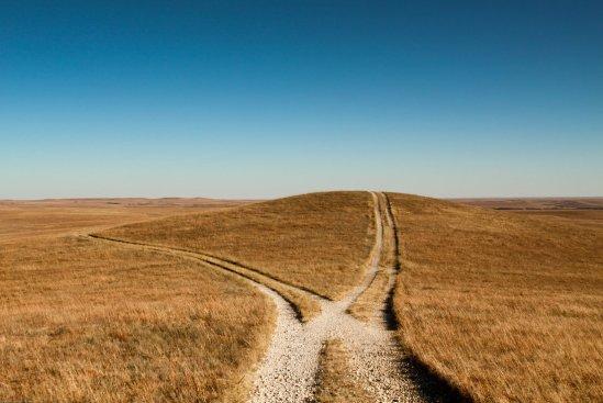 diverging_paths_by_mjrusche