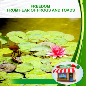 FREEDOM FROM FEAR OF FROGS AND TOADS copy