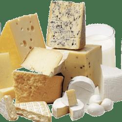 Welcome Life Beyond Dairy