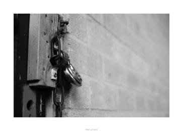 Nikon D90_28866__DSC0133-border