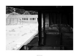 Nikon D90_28909__DSC0176-border