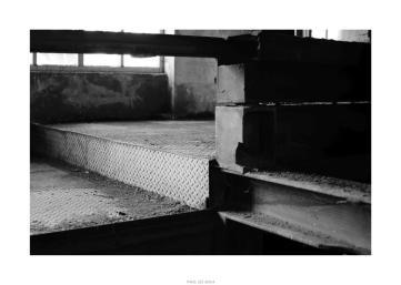 Nikon D90_28960__DSC0228-border