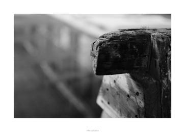 Nikon D90_28995__DSC0264-border