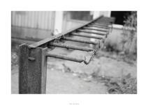 Nikon D90_29083__DSC0358-border