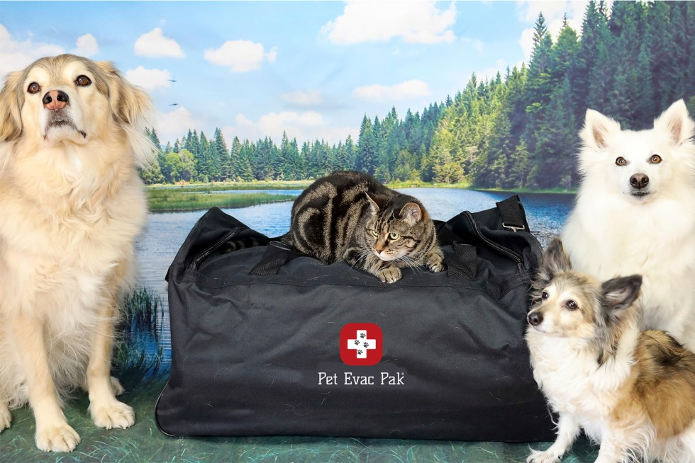 Custom Build your own pet survival kit