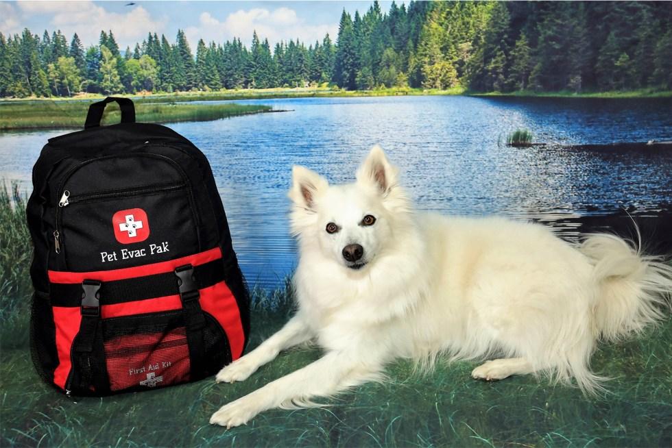 Emergency Survival Dog kit