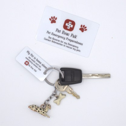 Emergency Contact Card, Key Ring card, Save my pet card