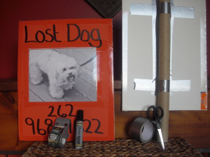 posting lost and found pet flyers