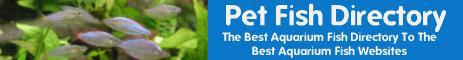 Pet Fish Directory